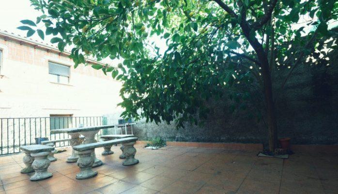 8. jardin